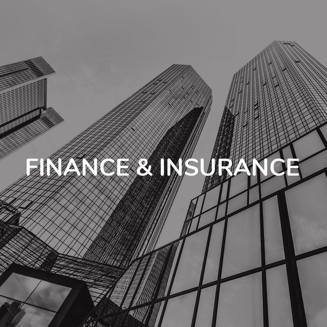 Nanga Systems Finance Insurance